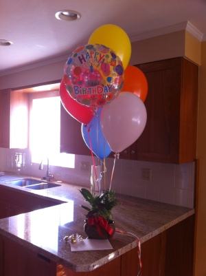 We moved into our new house on Andrea's Birthday! Jake surprised her with a little gift that was already in the house when they walked in.